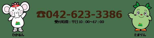 042-623-3386